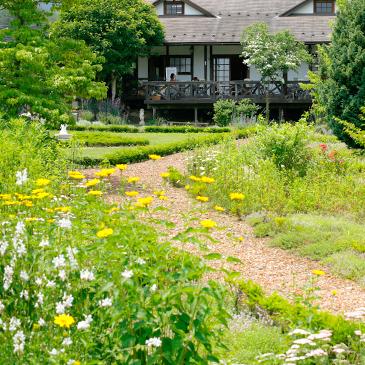 四季を通じて様々な植物が楽しめるガーデン。ハーブを鑑賞するなら5〜6月がおすすめです。